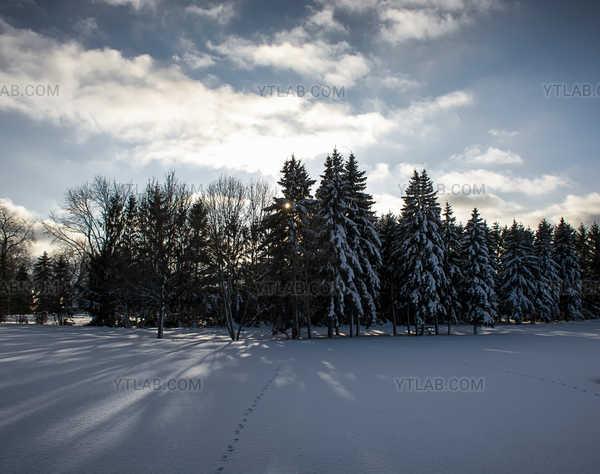 Calme d'hiver