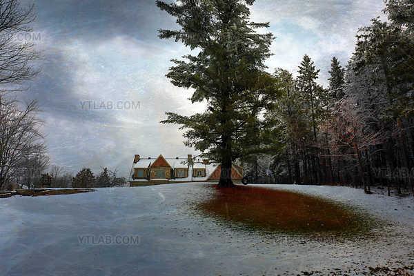 Les couleurs de l'hiver (1)