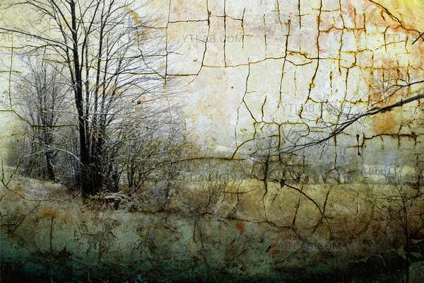 Un hiver texturé