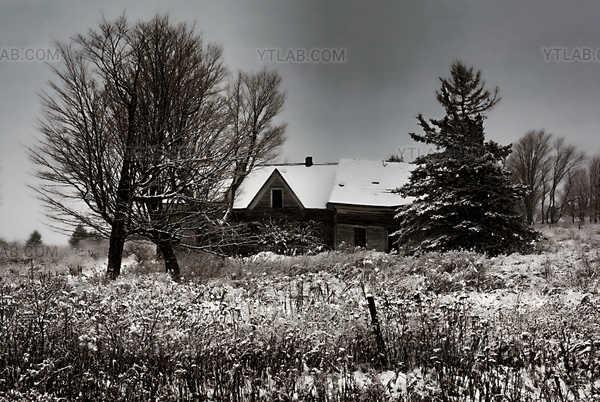 L'abandonnée (2)