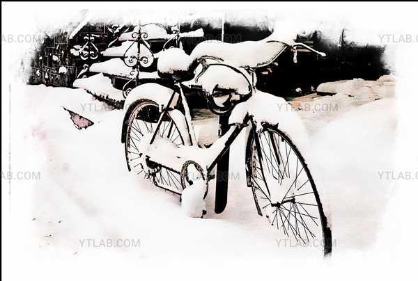 rachel street winter