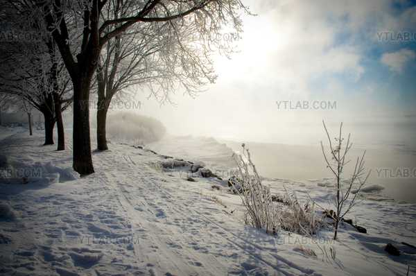 Sérénité d'hiver