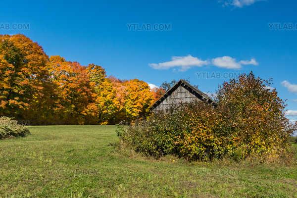 L'automne a la campagne