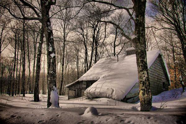 La vieille cabane à sucre