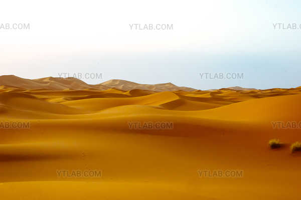 Dunes in the Sahara