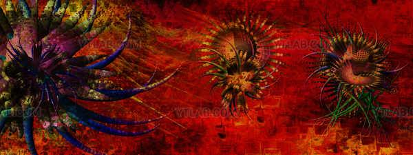 Orgemus fractal