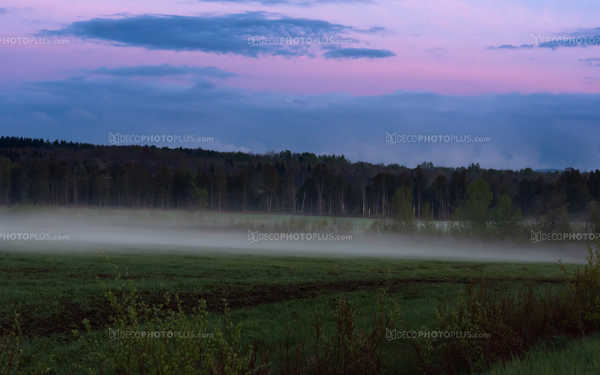 Hazy landscape