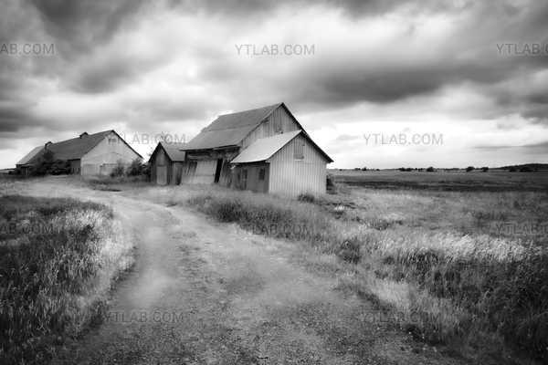 Barns path