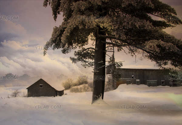 Un hiver en campagne