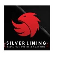 Logo of Silverlining Businesscoaching