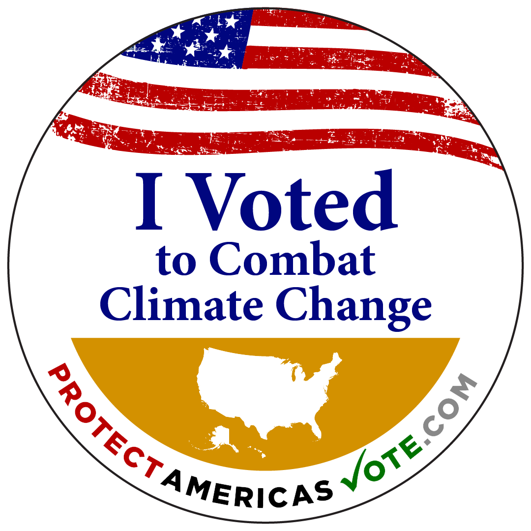 I Voted to Combat Climate Change