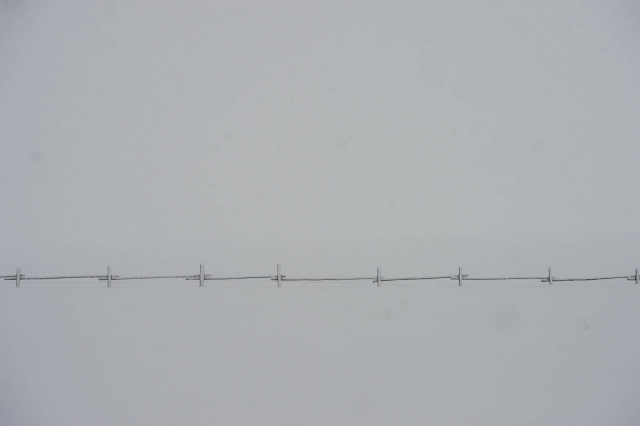 snowyfence_highway26wy_blotto_8781_1.jpg
