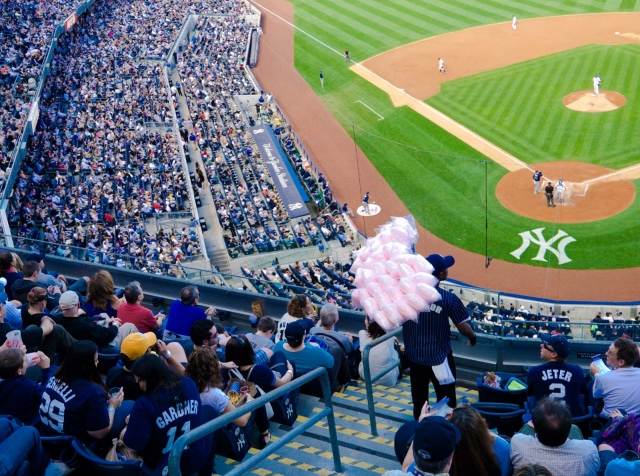 vendor_yankeestadium2012_blotto_1010081.jpg