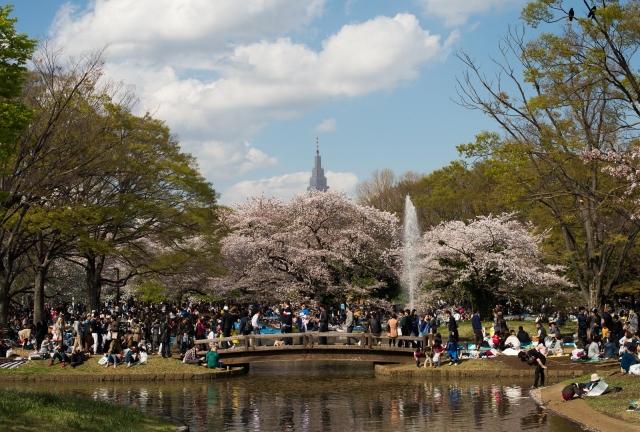 yoyogipark_tokyo2014_blotto_8315_1.jpg