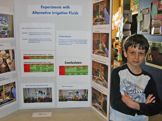 crystal science fair projects While learning about the properties of different saturated solutions, grow crystals using salt and sugar to determine which fosters the best crystals with this hands-on science.