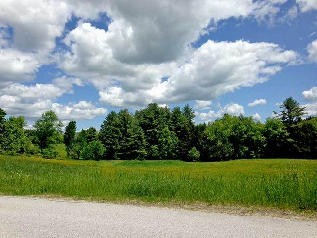 South Hill Road, Ludlow, VT 05149