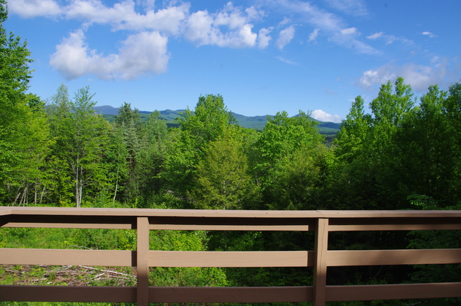 Gulch Road, Stowe, VT 05672