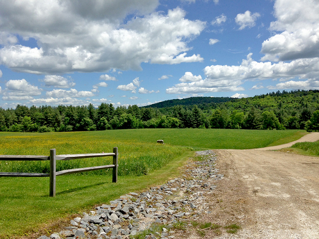 629 South Hill Road, Ludlow, VT 05149