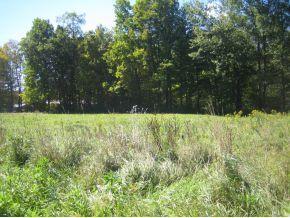 Land under 10 Acres