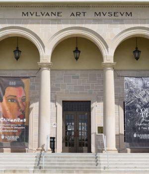 mulvane art museum