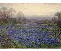 Julian Onderdonk, Untitled (Field of Bluebonnets), Oil on canvas, Overall: 33 5/8 x 48 3/4in. (85.4 x 123.8cm), Courtesy of the Dallas Museum of Art, Texas, Bequest of Margaret M. Ferris
