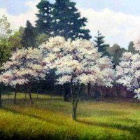 John Mac Kah, Dogwoods, Oil on linen, Overall: 23 × 30in. (58.4 × 76.2cm), Courtesy of the artist, Asheville, North Carolina