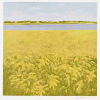 Jane Freilicher, Goldenrod, Lithograph, Overall: 32 x 31 x 1 1/4 in. (81.3 x 78.7 x 3.2 cm), Collection of Art in Embassies, Washington, D.C.