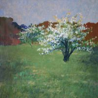 Robert LaHotan, Blooming Apple Tree, Oil on canvas, Overall: 40 3/4 x 40 3/4 x 1 1/2 in. (103.5 x 103.5 x 3.8 cm), Collection of Art in Embassies, Washington, D.C.; Gift of Mr. James T. McCartin
