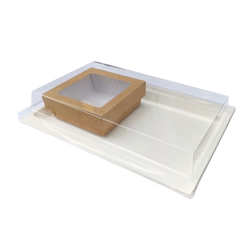 PacknWood Sugarcane Serving Tray and Kraft Window Box Set - TRIPI2ECOKRAY7