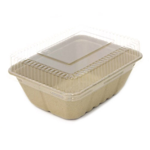 "BeGreen PET Clear Dome Lid for Utility Tray - 9"" x 7"" - BG-UT-DPL - 500/Case"