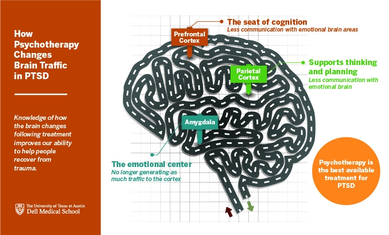 An infographic illustrating how psychotherapy changes brain traffic in PTSD.
