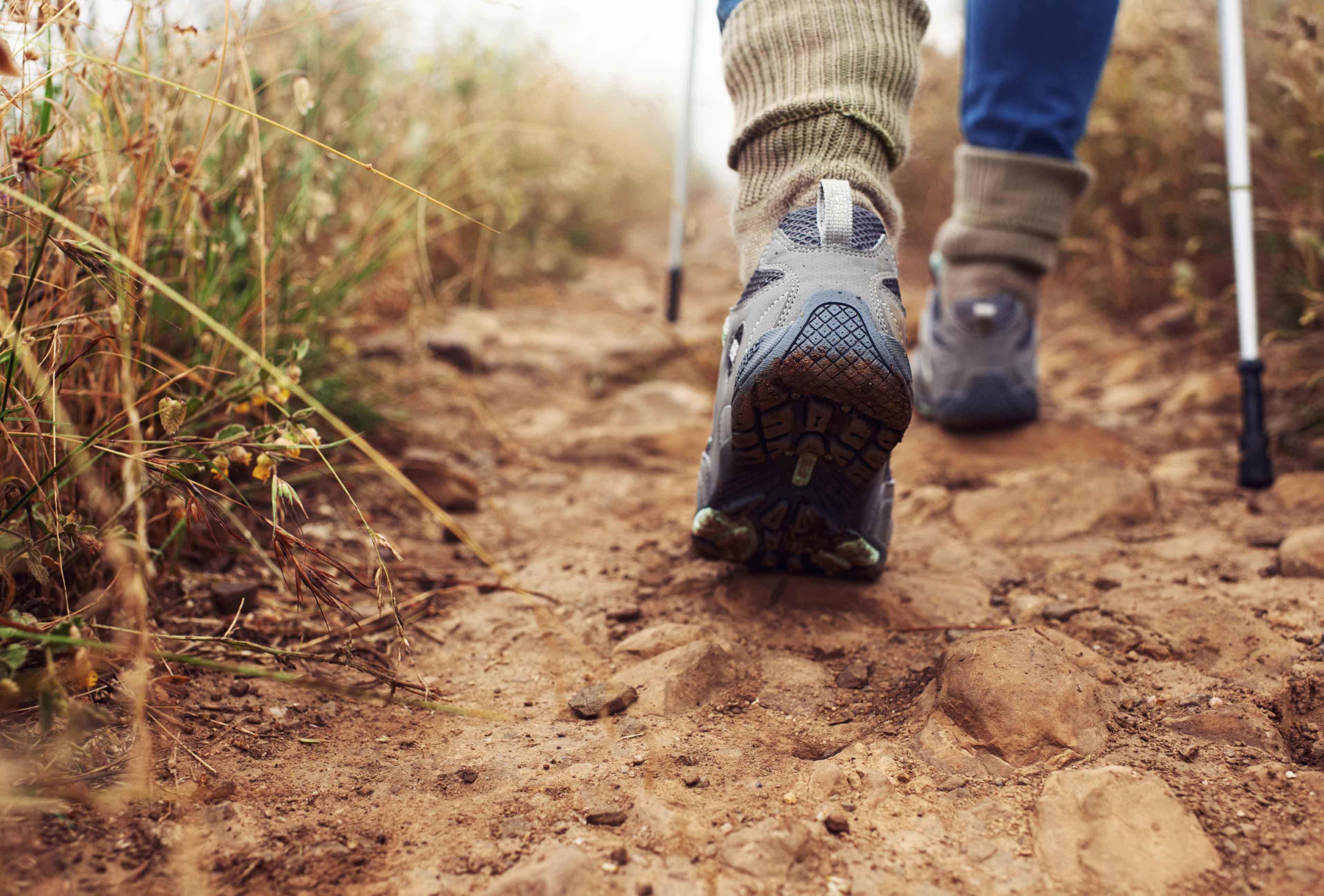 Hiking Story Image