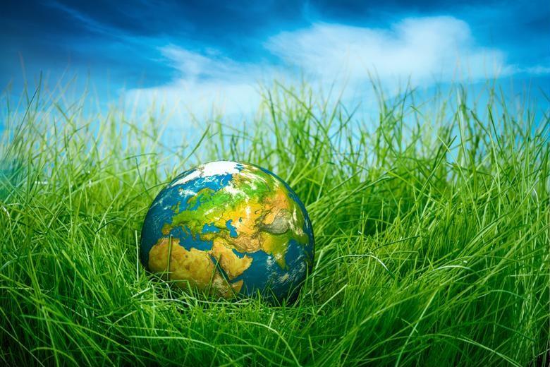 A globe sits in a field of grass