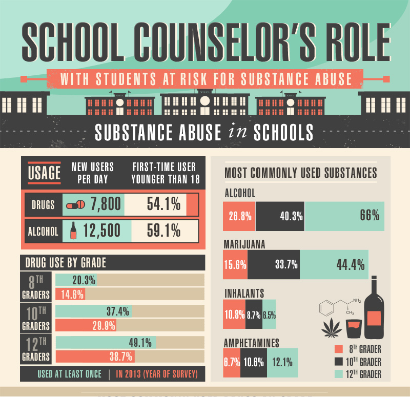 School Counselor S Role With Students At Risk For Substance