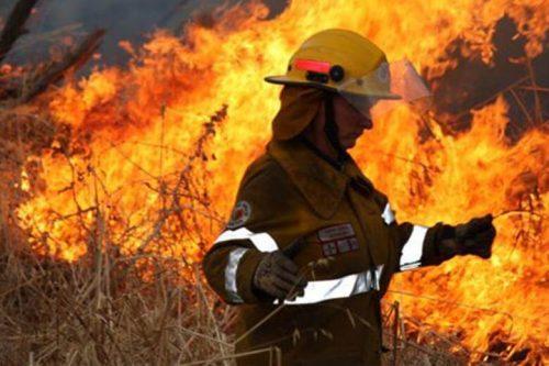 Firefighter battling wildfire
