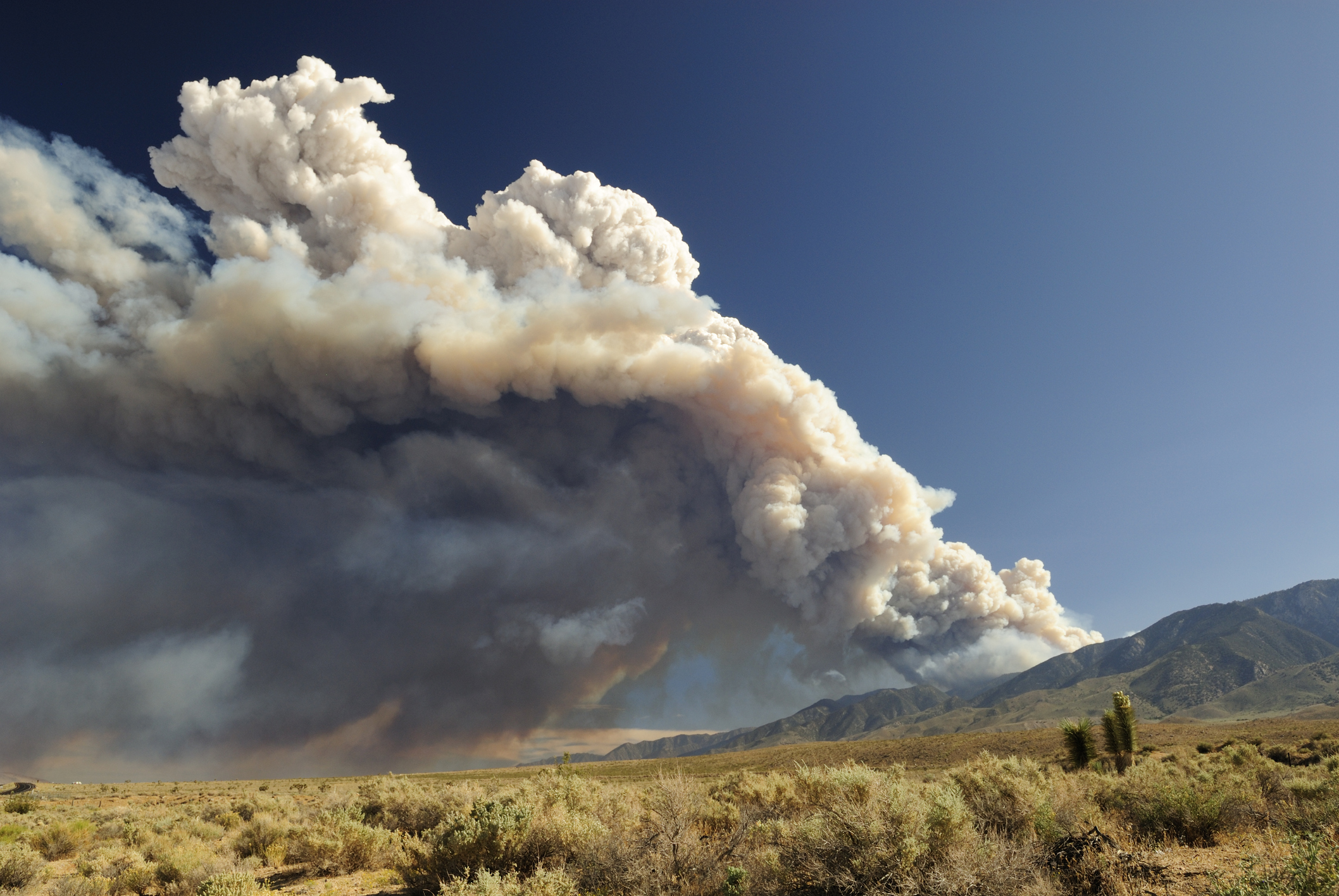Cloud of smoke from a California wildfire