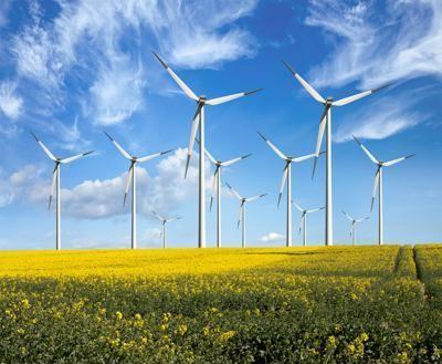 A renewable energy installment.