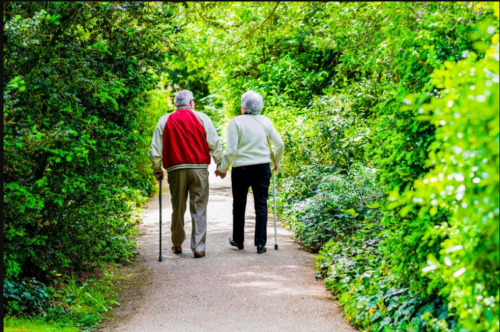 An elderly couple walk through a park.