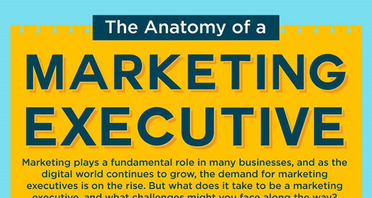 The Anatomy of a Marketing Executive