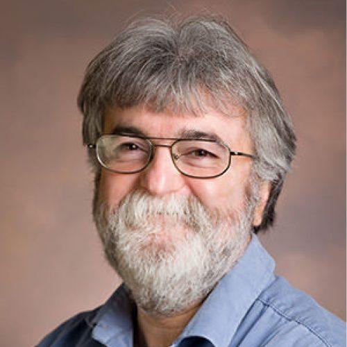 Photo of Gürsel Süer, Ph. D.