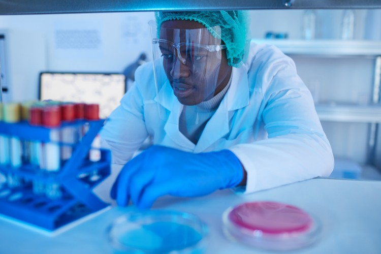 A lab technician analyzes medical samples in test tubes.