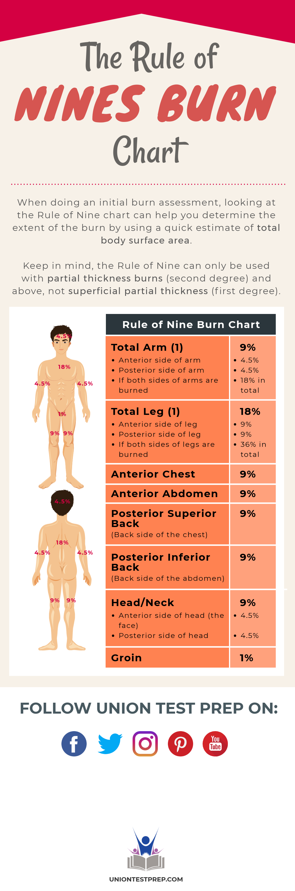 rule of nines burn chart