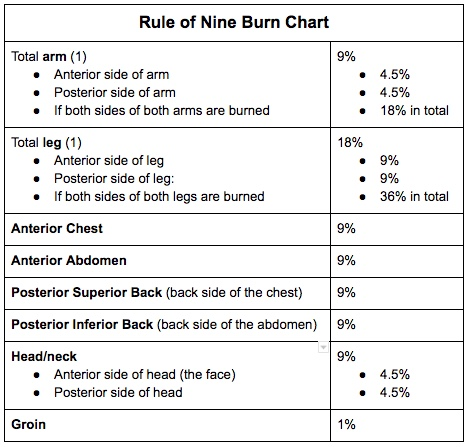 burns-chart-corrected.jpeg