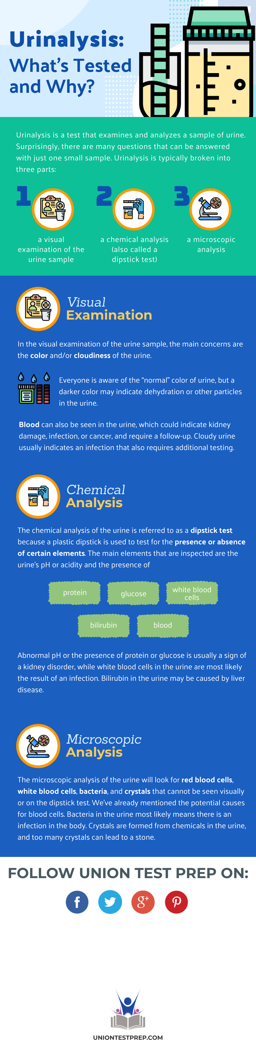 urinalysis whats tested
