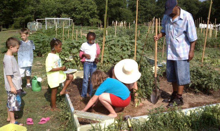 One of the ways people can unite for change is through community gardens.