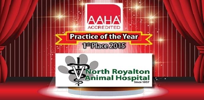 AAHA practice of the year 2015 north royalton anim