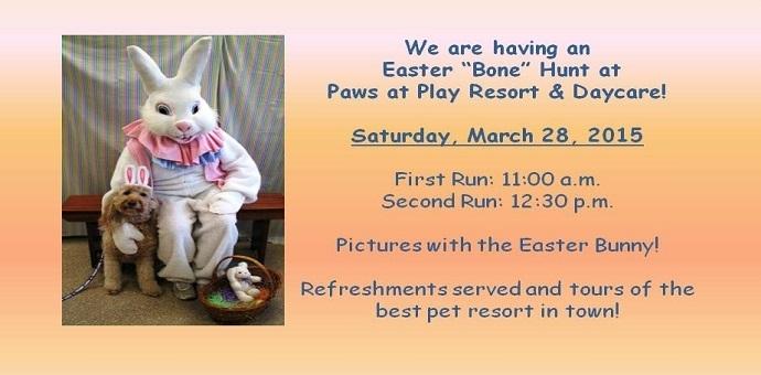 Easter bone hunt for dogs
