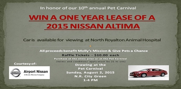 Nisson Altima, North Royalton Pet Carnival