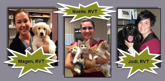Registered Veterinary Technician Week OHIO Vet