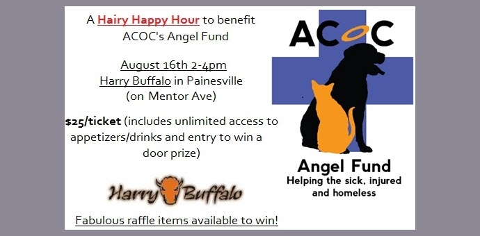 Chardon Ohio vet Fundraiser Harry Buffalo cat dog